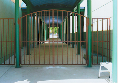 Iron Gate Fabrication & Repair